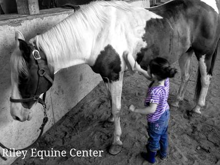 Riley Equine Center