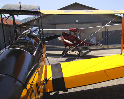 One Tiger Moth to another