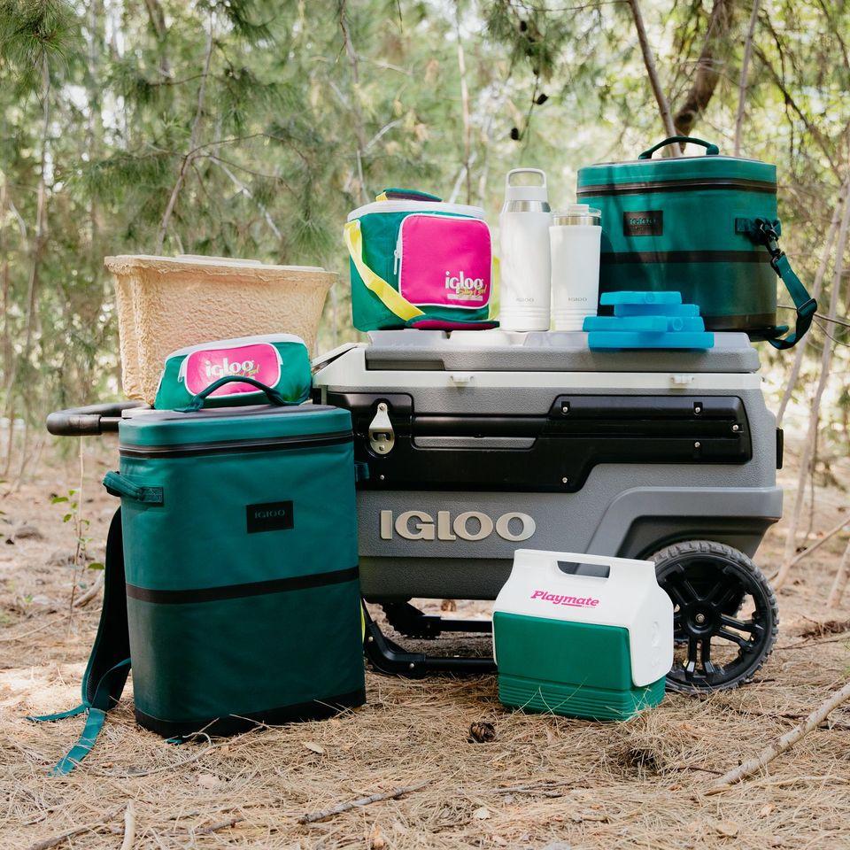 Igloo Prize Pack